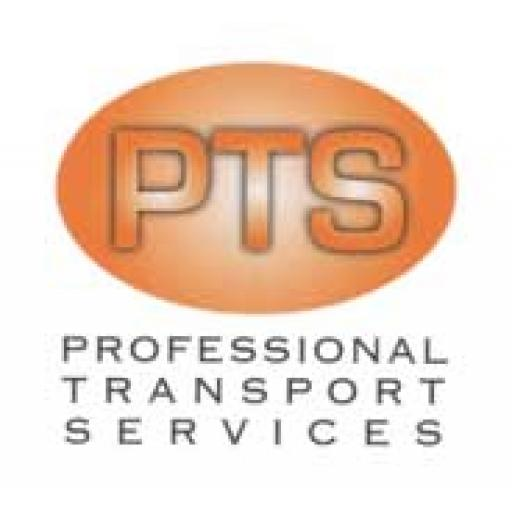 Professional Transport Services (Consultancy and Training)